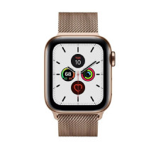 Apple Watch Series 5 LTE 40mm Gold Steel w. Gold Milanese Loop - Gold Steel (MWWV2) / MWX72
