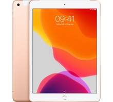 Планшет Apple iPad 10.2 Wi-Fi + Cellular 32GB Gold (MW6Y2)